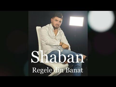 Shaban Regele din Banat Si cu bani daca ar ploua oficial audio 2020